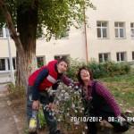 SAM_0819